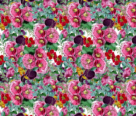 Florence fabric by dolphinandcondor on Spoonflower - custom fabric