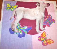 American Bulldog Fabric with Butterflies