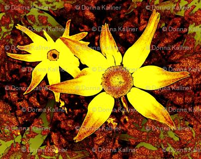 Garden Variety Specimens