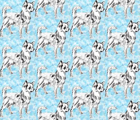 Chihuahua on Aqua Background fabric fabric by dogdaze_ on Spoonflower - custom fabric