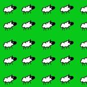 Rrrrrrsheep_screenprint_green_background_shop_thumb