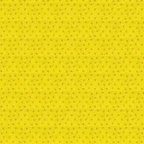 Chrome_Yellow Calico