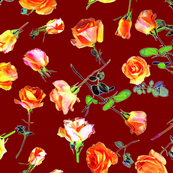 roses dark red col. 16