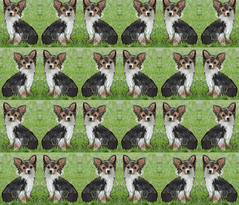 Chihuahua fabric fabric by dogdaze_ on Spoonflower - custom fabric