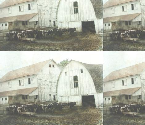 Amish_Dairy fabric by angelandspot on Spoonflower - custom fabric