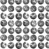 Rpotato_prints_5bw3_shop_thumb