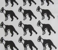 Black & White Boston Terrier
