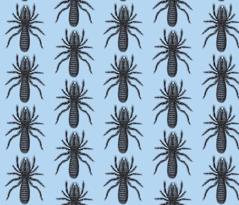 Black on Blue Arachnid fabric by relative_of_otis on Spoonflower - custom fabric
