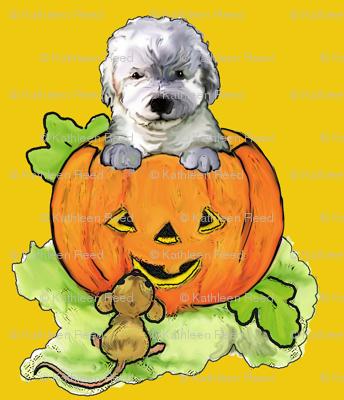 Halloween Labradoodle puppy