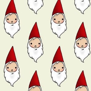 My Gnomey Homie