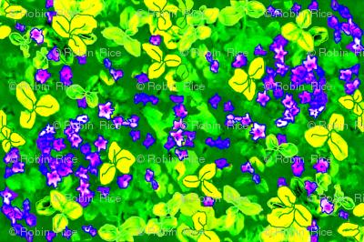 Sweet Violet Springtime
