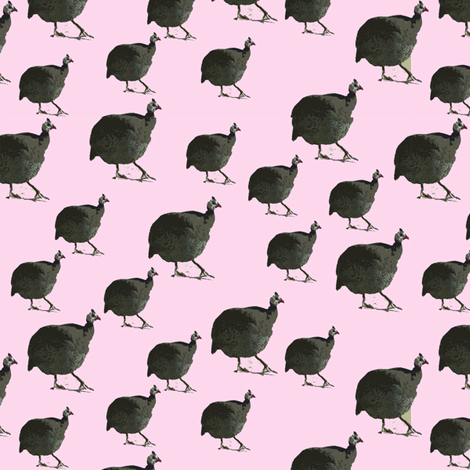 Rose Guinea Hen fabric by corinnevail on Spoonflower - custom fabric