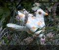 Rrrflower_bird_cut_n_sew_comment_99335_thumb