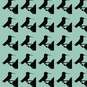 Hummingbird SF