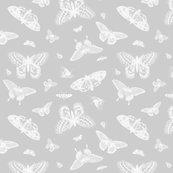 Rrrrgraybutterflies1_shop_thumb