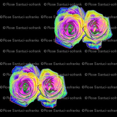 """Foil"" Roses on Black"