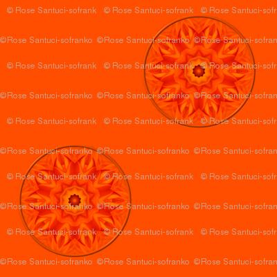 Orange/Apricot Roses Kaleidoscope