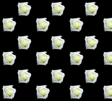 White Roses On Black fabric by artist4god on Spoonflower - custom fabric