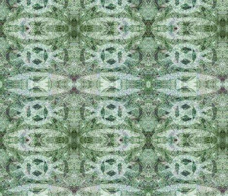 Ravi-lichen_shop_preview