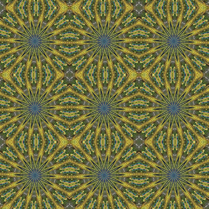 Peacock Kaleidoscope #2