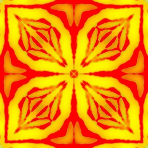 Iris Geometry