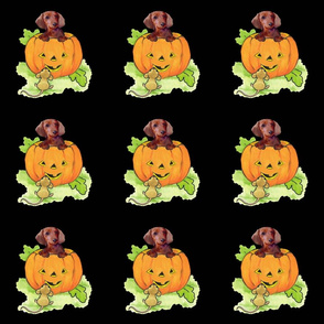 halloween_dachshund_fabric