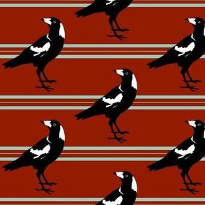 magpie stripe