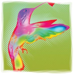 Hummingbird, L