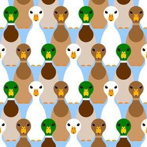 00736914 : Duck!