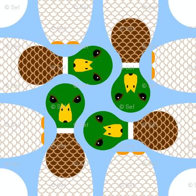 duckpinwheel
