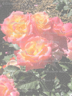 stained_glass_roses