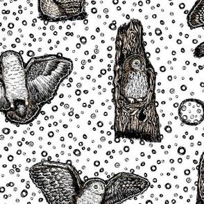 Owls_at_Dawn_by_Teja_Williams_half_drop_white_30x60_cm_repeat