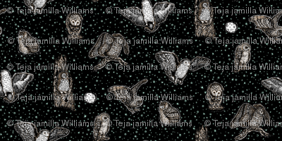 Owls_at_Midnight_by_Teja_Williams_half_drop_black_30x60_cm_repeat