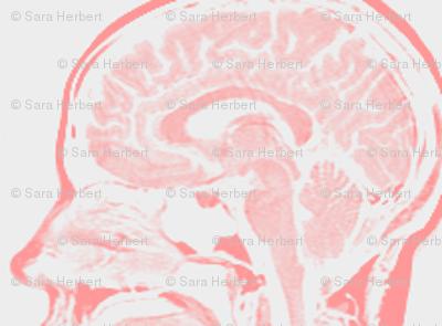 Little Brains in Rose