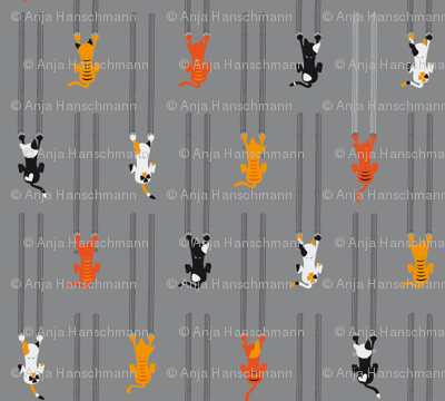 manche KATZEn KrATZEn - some CATs sCrATch - grey