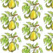 Fruit_pear_shop_thumb