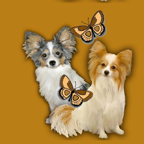 Two Papillons With Butterflies