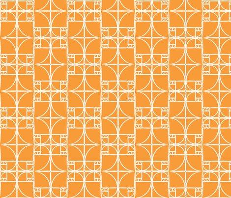 Rrfibo-citrus_orange.ai_shop_preview