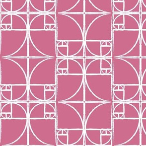 Orchid Fibonacci Spiral