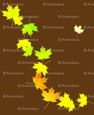 Maple Leaf Cascade 1, L