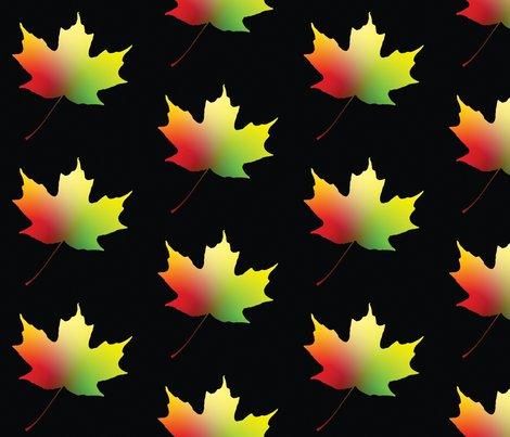Rrr025_rainbow_maple_leaf_l_shop_preview