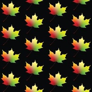 Rainbow Maple Leaf, S