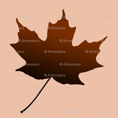 Chocolate Maple Leaf, L