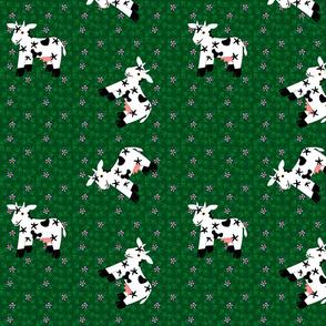 Sidehill Cows