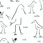 Rrbirds_of_a_line_shop_thumb