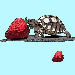 Kevin and the Strawberry - big
