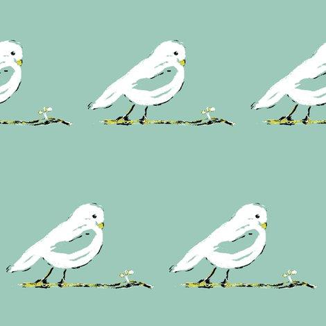 Rrrrrrcontest_bird_3_shop_preview