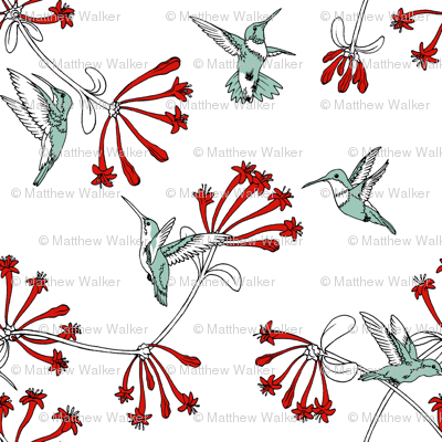 A_Charm_of_Hummingbirds