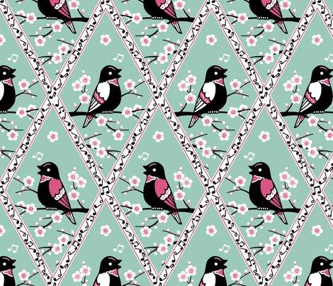 Rcontest_birds_shop_preview