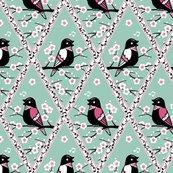 Rcontest_birds_shop_thumb
